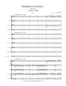 Symphony in E minor, Op. 32 (Gaelic) - Complete Score, 1st Mvt. (pp. 13-14)13